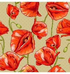 Seamless floral background with red poppy vector