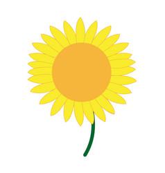 Cute flower sunflower decoration nature vector