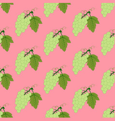 grapes seamless pattern vector image vector image
