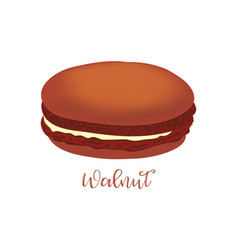 French macaroon vector