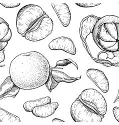 Hand drawn mandarin seamless pattern vector