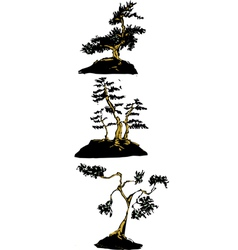 Japanese bonsai trees vector image vector image