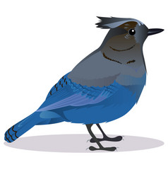 Stalker joke bird vector