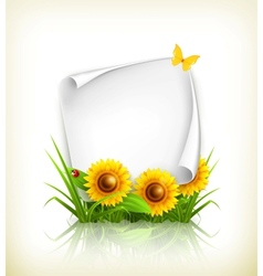 Sunflowers and paper vector image vector image