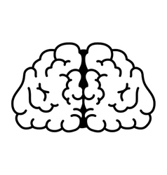brain head mind human organ vector image