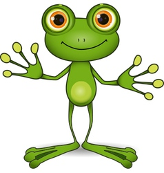 cute frog vector image