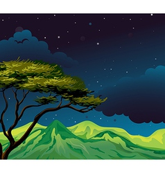 A starry evening vector image