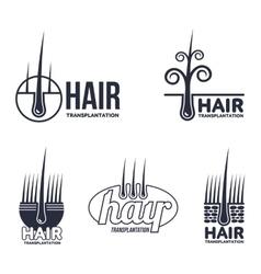 Set of hair transplantation logo templates vector image