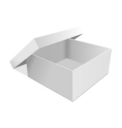 empty paper box vector image