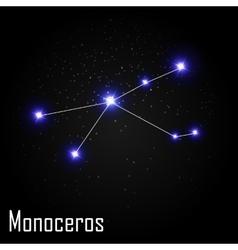 Monoceros constellation with beautiful bright vector