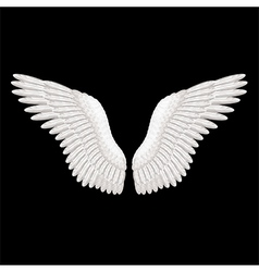 object angel wings vector image vector image