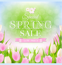 spring sale poster vector image vector image