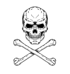 A skull and crossbones vector