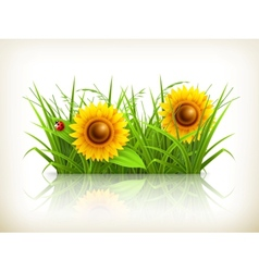 Sunflowers in grass vector
