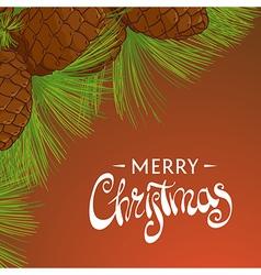 Christmas cedar cones vector image