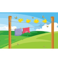 Clothes on the line vector