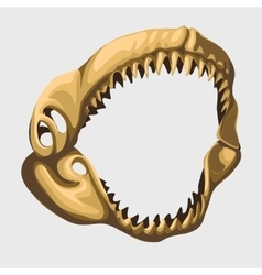 Fossil toothy open jaw of shark image vector image