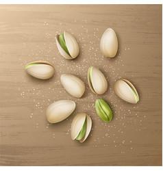 Handful of pistachio nuts vector