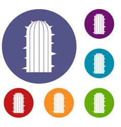 Plant of desert icons set vector