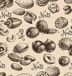 Vintage hand drawn sketch nuts seamless pattern vector image vector image