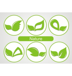 Set of green leafs images vector