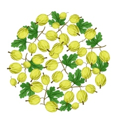 Nature background design with gooseberries vector