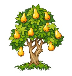 Pear tree with ripe fruits vector
