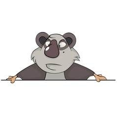 Portrait of a panda vector image