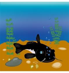 Bigfish vector