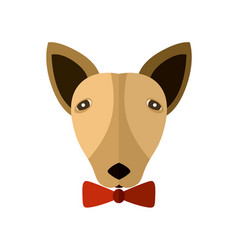 bull terrier head icon in flat design vector image vector image