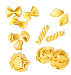 Traditional italian pasta set vector