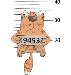 Cat the prisoner criminal mug shot cartoon vector