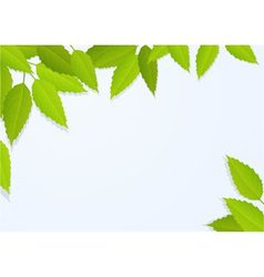 Nature background with tree leaves vector