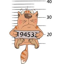Cat the prisoner Criminal mug shot Cartoon vector image