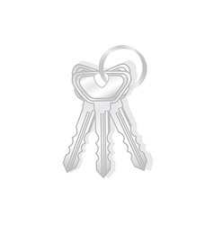 Keys isolated vector image vector image