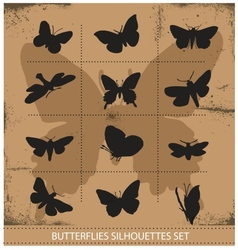 Nature various symbolical butterflies set vector
