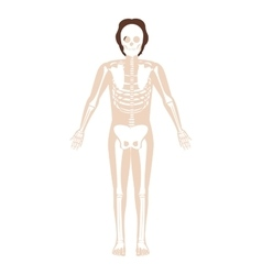 Silhouette man system bone with hair vector
