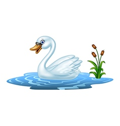Cartoon beauty swan floats on water vector image