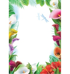 Frame with tropical flowers vector image