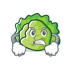 Angry lettuce character cartoon style vector