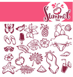 collection of summer tropical objects leaves vector image