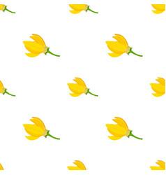 flower - ylang-ylang cananga seamless pattern vector image