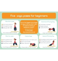 Yoga poses for beginners infographic vector