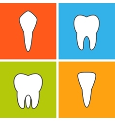Kinds of tooth vector