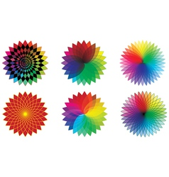 spectrum flowers vector image