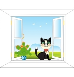 Window in nature vector