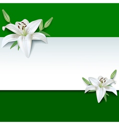 Festive greeting or invitation card 3d flower lily vector