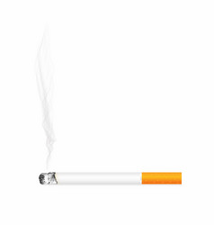 cigarette with ash and smoke isolated on vector image