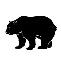 Canadian brown bear canada single icon in black vector