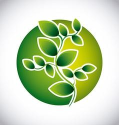green button vector image
